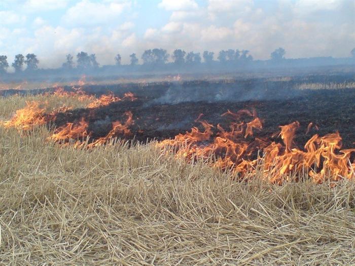 Засутки ульяновские пожарные три раза тушили сухую траву