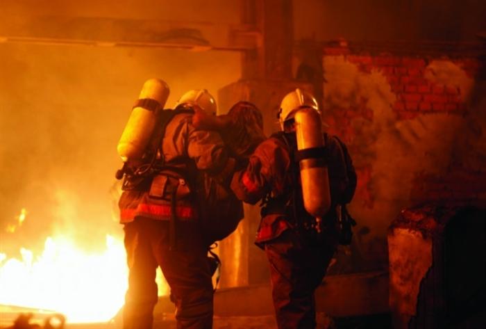 ВУльяновске напожаре погибли животные