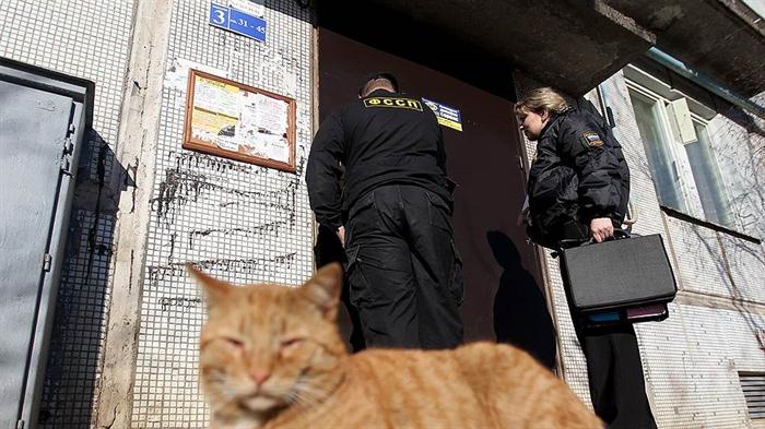 Около 7-ми тыс. алиментщиков находятся под угрозой лишения жилья из-за долгов— Минюст