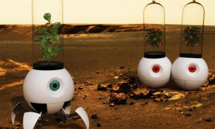 Ученые засеют луком огород наМарсе для жизни первых космических переселенцев
