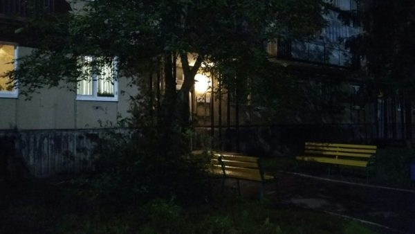 Тело отыскал сосед. ВДимитровграде погибла 10-летняя девочка