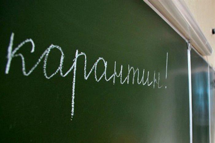 В 5-ти классах саратовских школ нанеделю объявили карантин