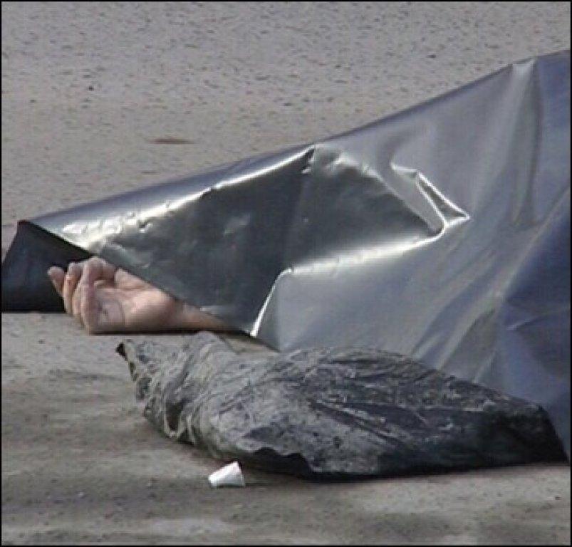 ВУльяновской области фура задавила насмерть дорожного рабочего