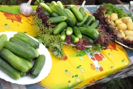 ВУльяновске пройдет фестиваль овощных солений имаринадов