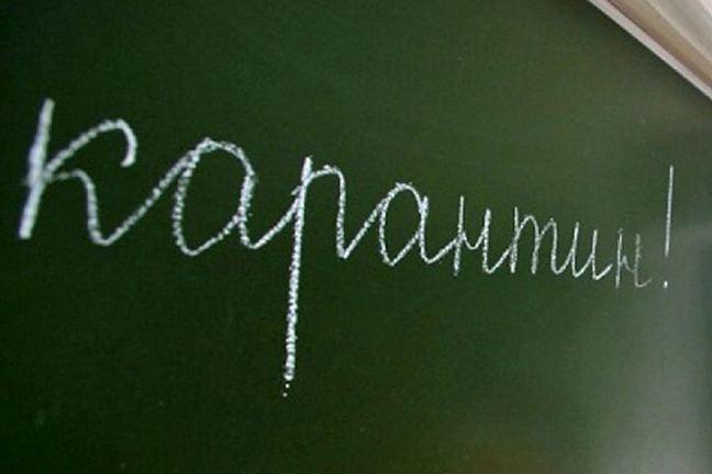 Вшколах Ульяновска закрывают классы накарантин погриппу