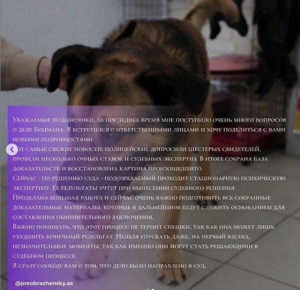 Алабай: особенности питания взрослых собак