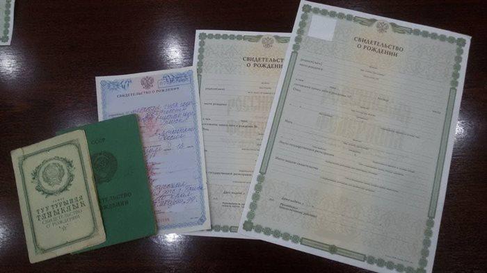 Свидетельство зеленое с фото